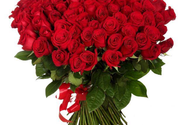 Прекрасные картинки цветы